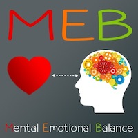 MEB - Mental Emotional Balance - il software