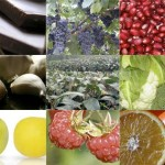 prodotti-orac-antiossidanti