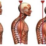 postura ansia e stress
