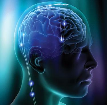 connessioni cerebrali