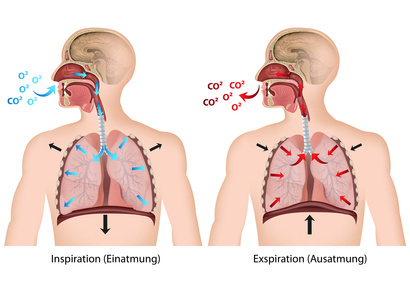 respirazione