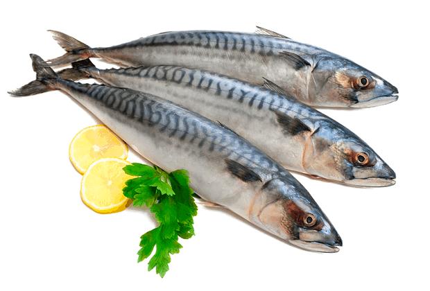 Pesce azzurro Omega 3