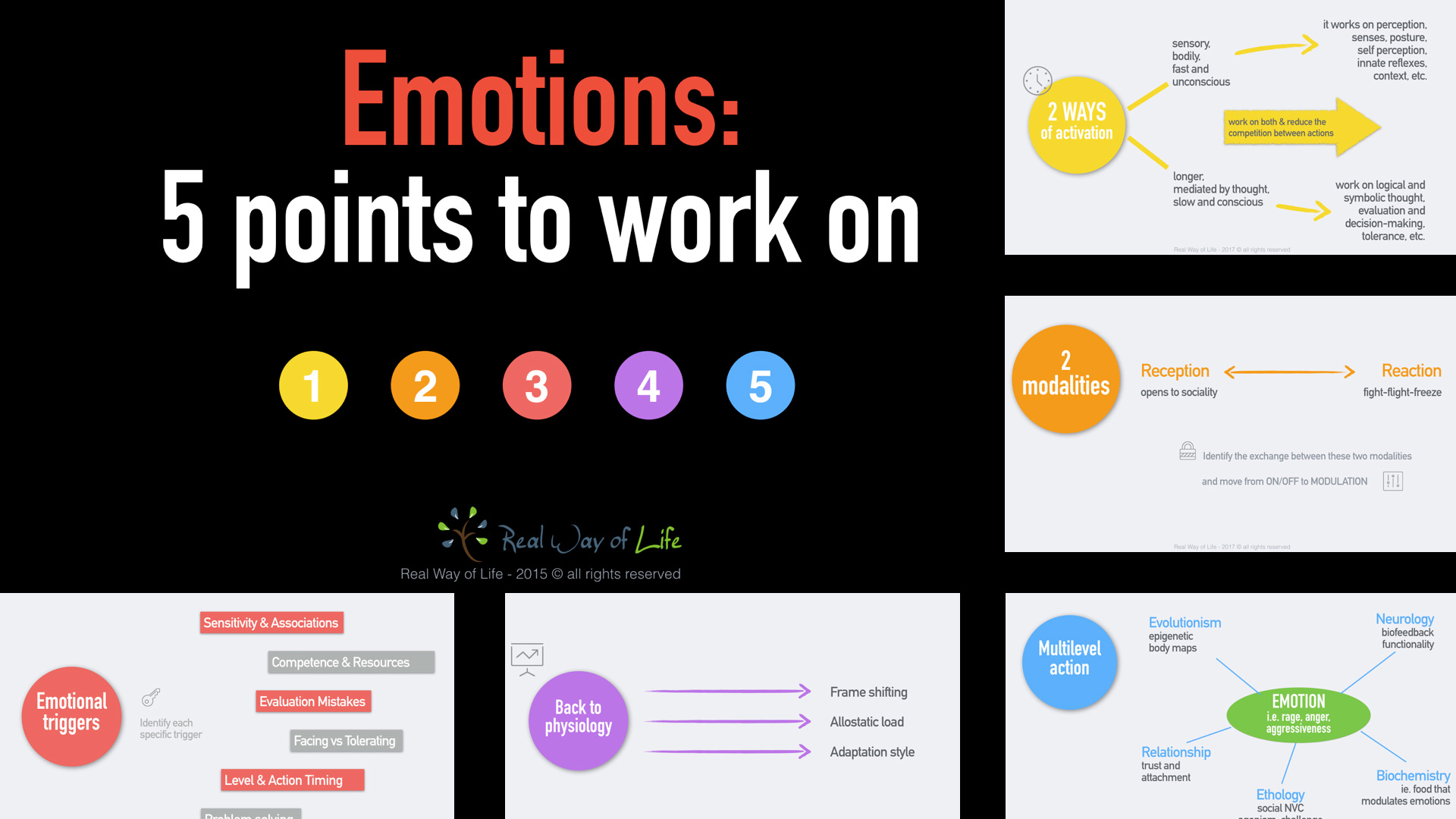 real way of life articles video emotions 5 points to work on