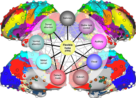 emozioni network