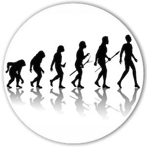 evolutionary neuroscience psychology