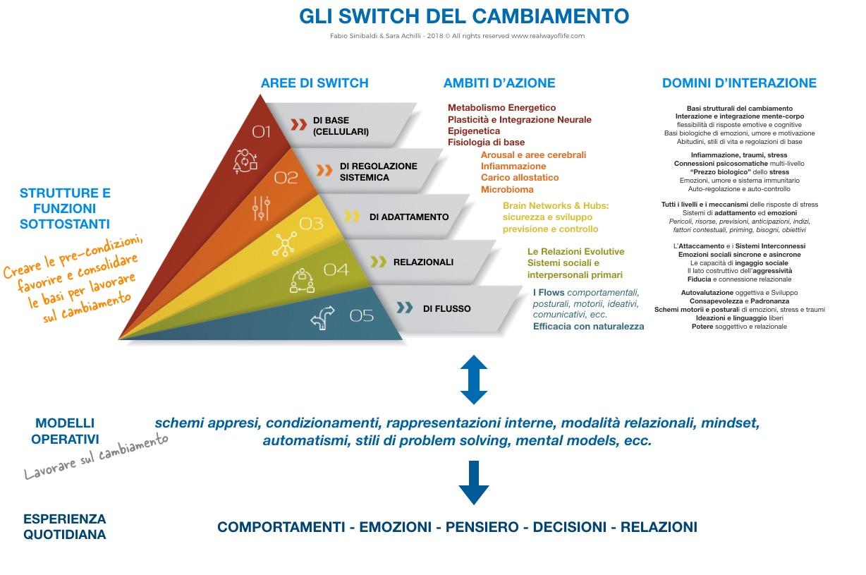 schema switch cambiamento