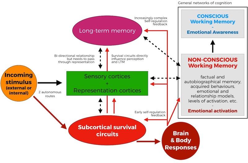 conscious and non-conscious emotional process